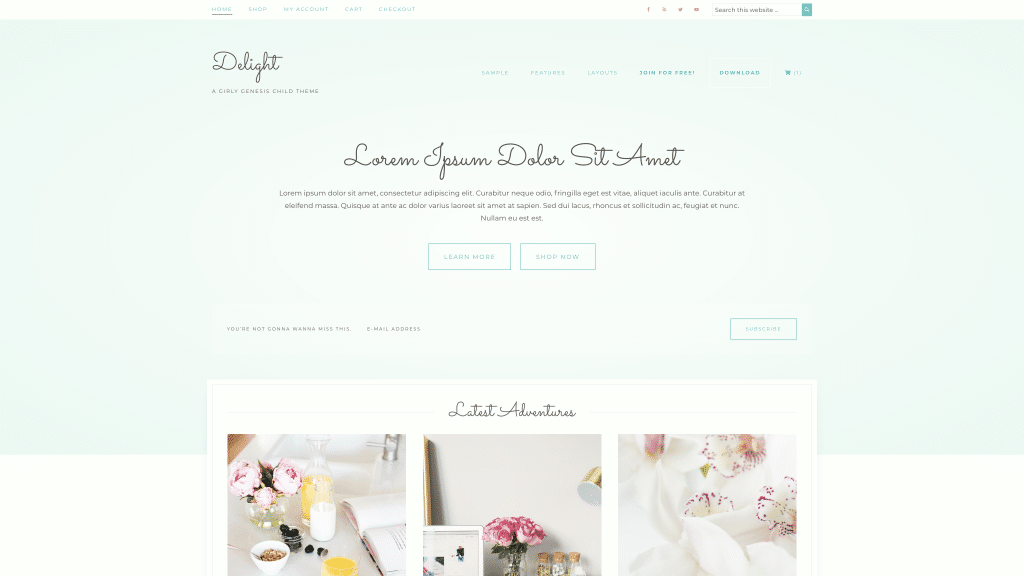 An example of the Delight theme with a blue color scheme instead of pink.